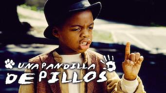 Una pandilla de pillos (1994)