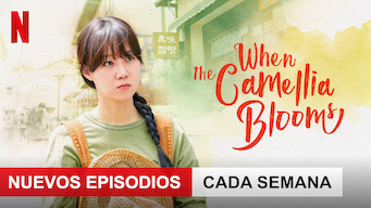 When the Camellia Blooms (2019)