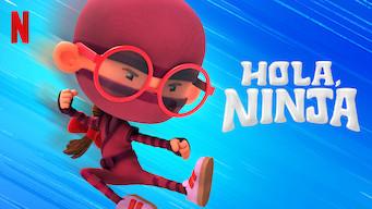 Hola, ninja (2019)