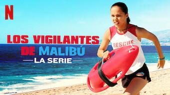 Los vigilantes de Malibú: La serie (2019)