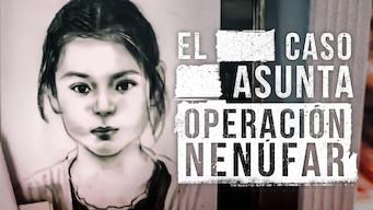 El caso Asunta (Operación Nenúfar) (2017)